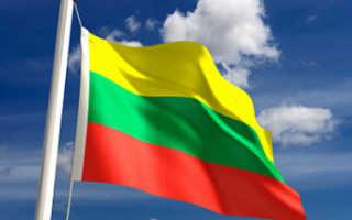 Виза в Литву — Оформление шенгенской визы в Литву для россиян в Москве