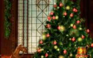 13 самых странных новогодних традиций со всего мира