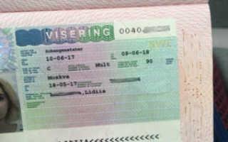 Виза в Швецию 2021 – самостоятельное оформление, инструкция, документы, стоимость